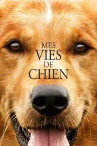 """Affiche du film """"Mes vies de chien"""""""