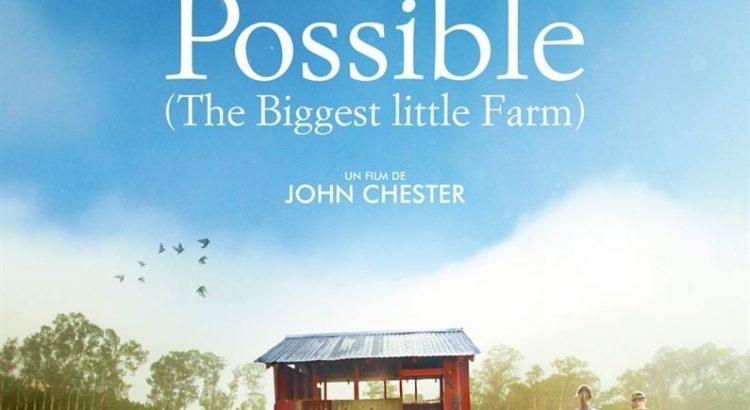 """Affiche du film """"Tout est possible"""""""